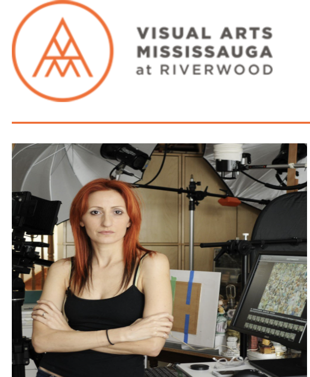 Visual Arts Mississauga @ Riverwood > professional development ONLINE COURSE